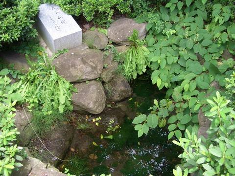 CIMG1169瓜割清水(諏訪神社脇)