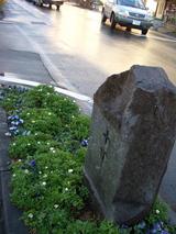 10丁石と花