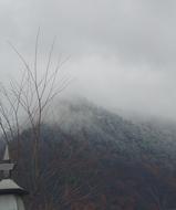旭山初冠雪
