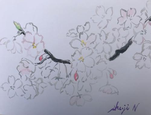 水彩画家・長尾周二1803261