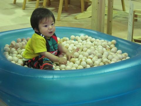 150-木球プール04