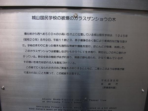 DSCF2633