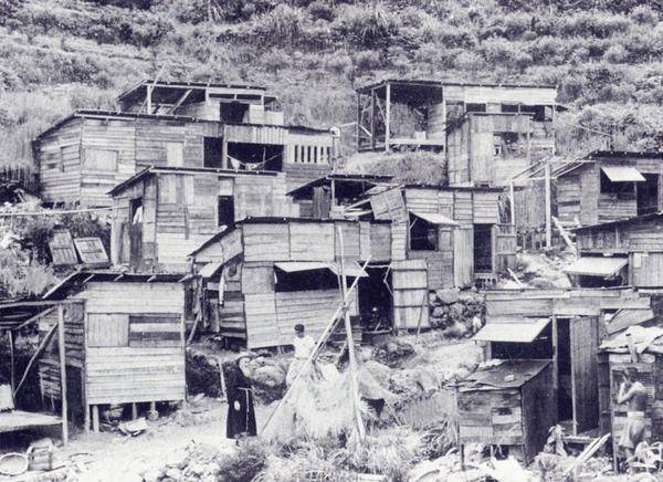 竹の久保アリの街144