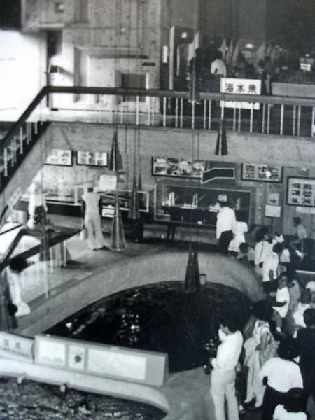 長崎水族館2