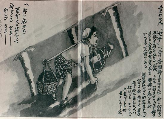 sakubee898