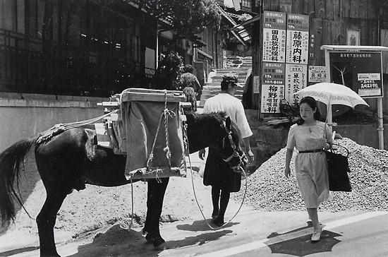 昭和50年高平町・対州馬330