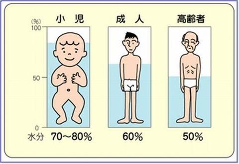 年齢体液%