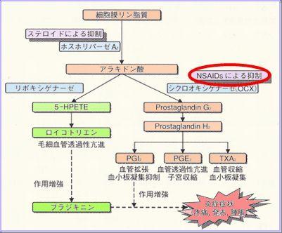NSAIDS作用