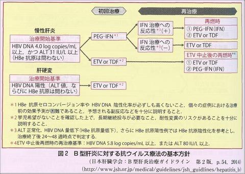 B型肝炎治療方針