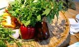 自家栽培野菜とハーブ