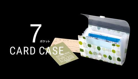 2013_42_item_pic15