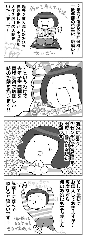 ブログ 子宮 筋腫