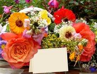 flowers-2719351_640