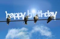birthday-2408092_640