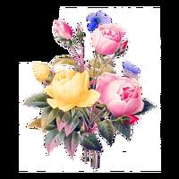 flowers-2919730_640