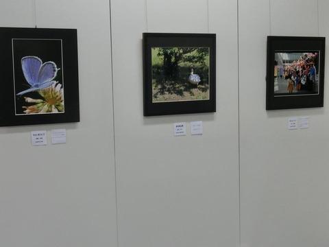 日本画家・柳樂晃里・第13回安来市美術展A9