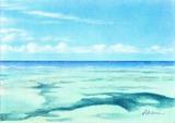 夏の海20120112