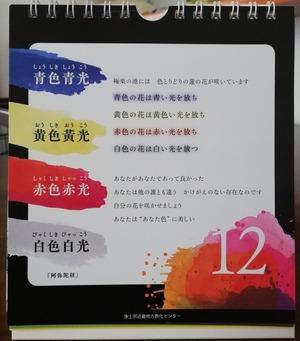 IMG_20210213_112412