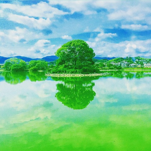 貴志川町 平池 REFLECTION 13_tsuyoshi_tamaki