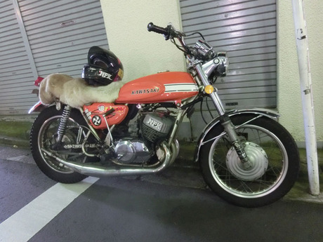 CIMG4964