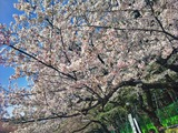C360_2012-04-12-14-55-15