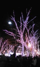 20101224表参道②