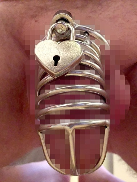 chastity_belt_8230-001s