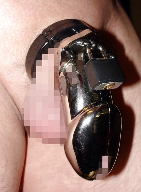 chastity_belt_8230-002s