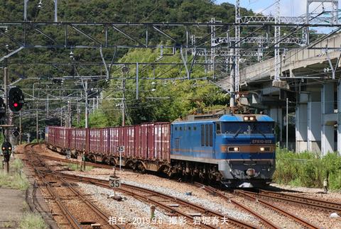 EF510502 ,相生s9692