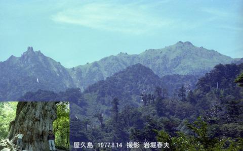 19770814 屋久島1