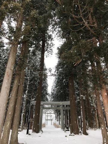 上杉八幡神社(冬2)