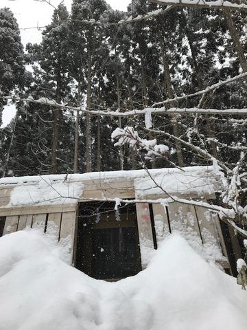 上杉八幡神社(冬6)