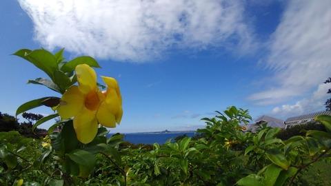 沖縄_191030_0254