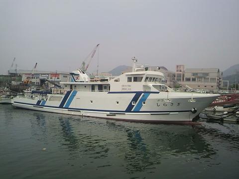 P1003049