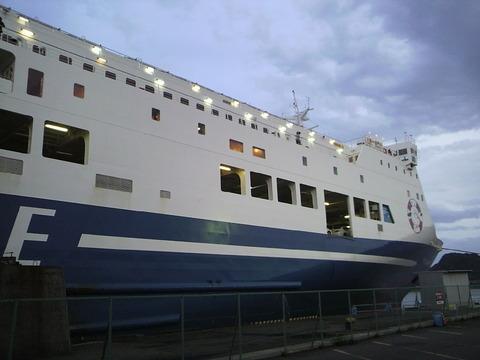 P1003846