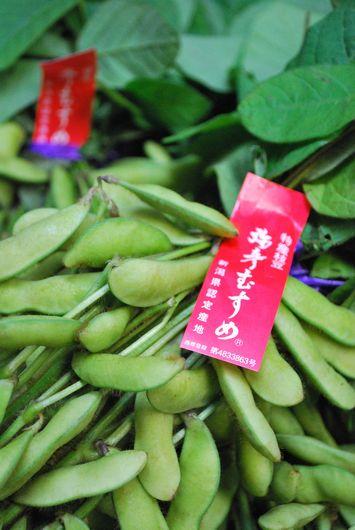 弥彦むすめ 枝豆