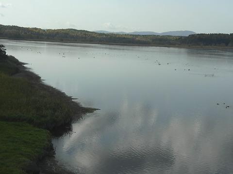 クッチャロ湖のハクチョロ湖畔 0
