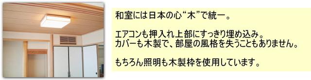 example_light_b