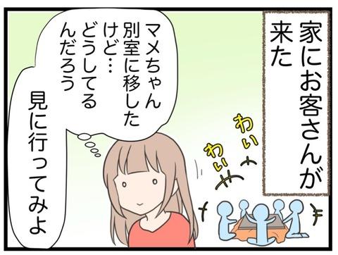 IMG_0580