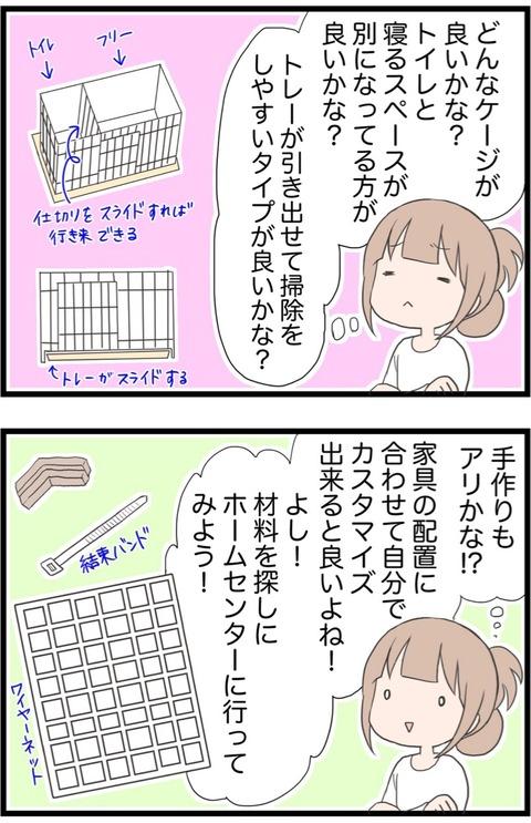 IMG_0522