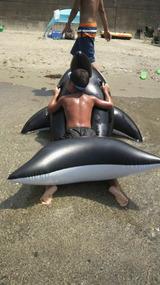 浜に打ち上げられた、浮きシャチに乗った少年