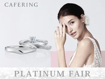 cafering_platinum_fair_2021_5