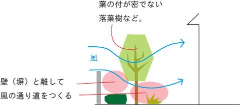 風 植栽 2