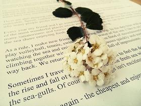 flower-book-1629315_640
