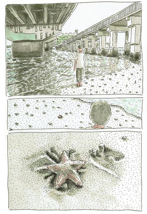 ヒトデ(モミジガイ)1_300