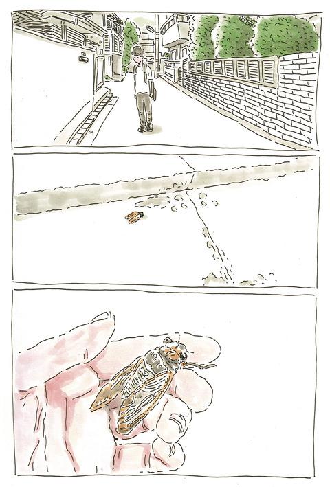 蝉の墓場1_300