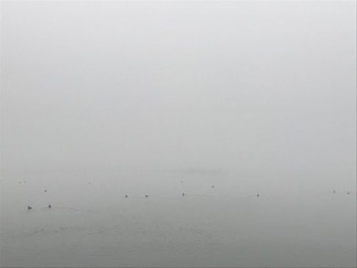霧に包まれた琵琶湖