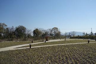 ラ コリーナ近江八幡