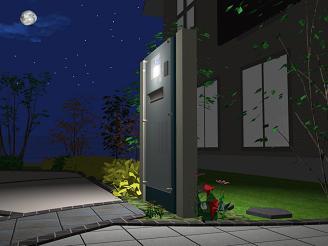 夜・・お庭の風景