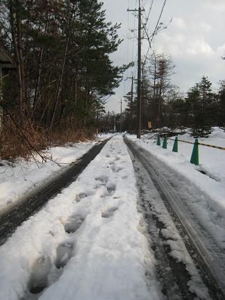 雪に埋もれた道路